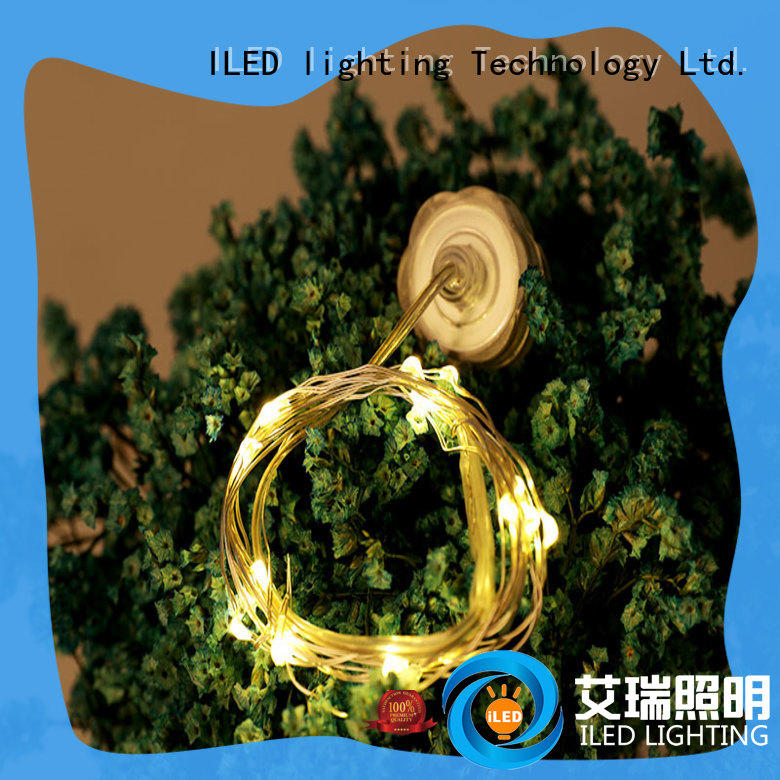 ILED battery christmas lights supplier for indoor