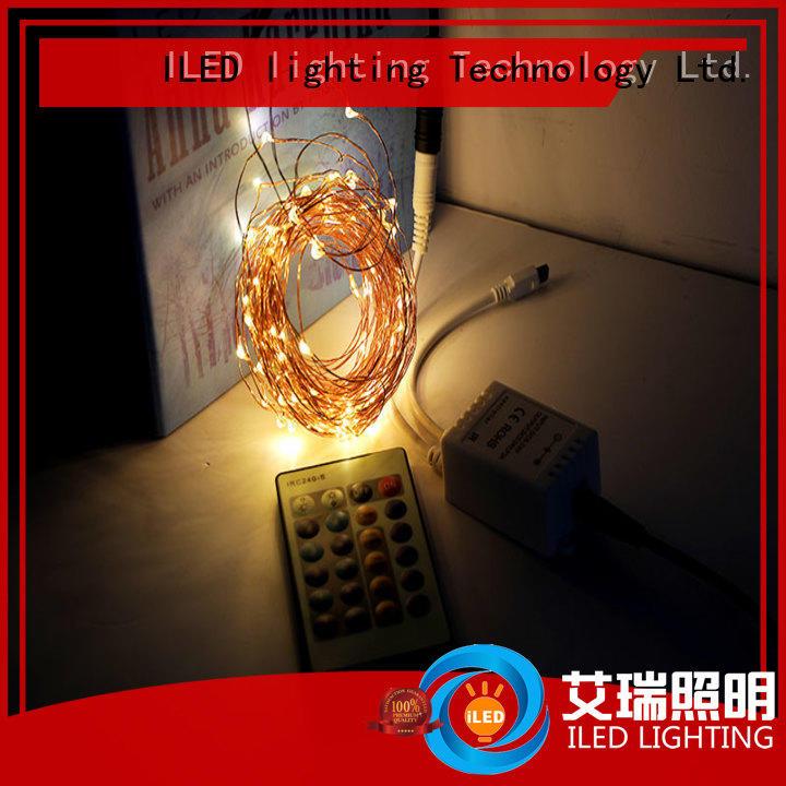 ILED white fairy lights adaptor plug lamp for christmas