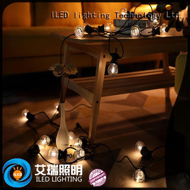low voltage coloured festoon lights design for indoor