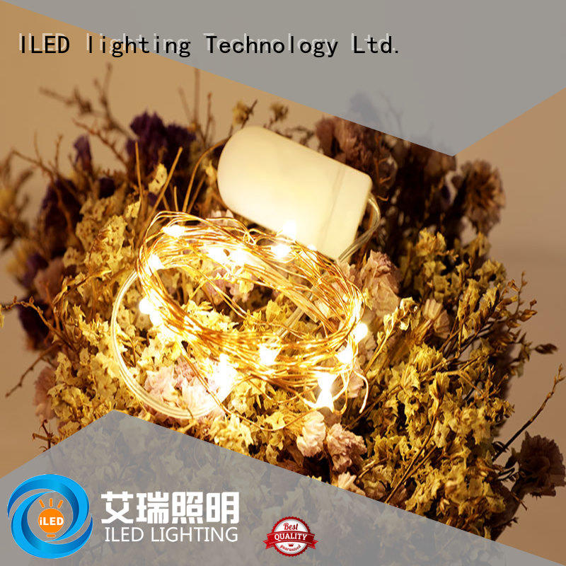 ILED remote copper wire fairy lights battery operated lamp for outdoor