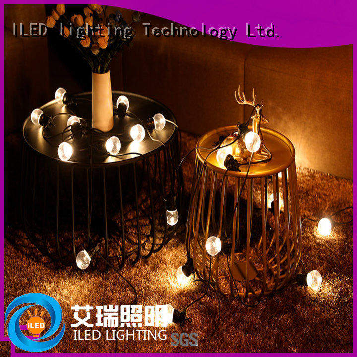 for outdoor hanging festoon lights clear ILED