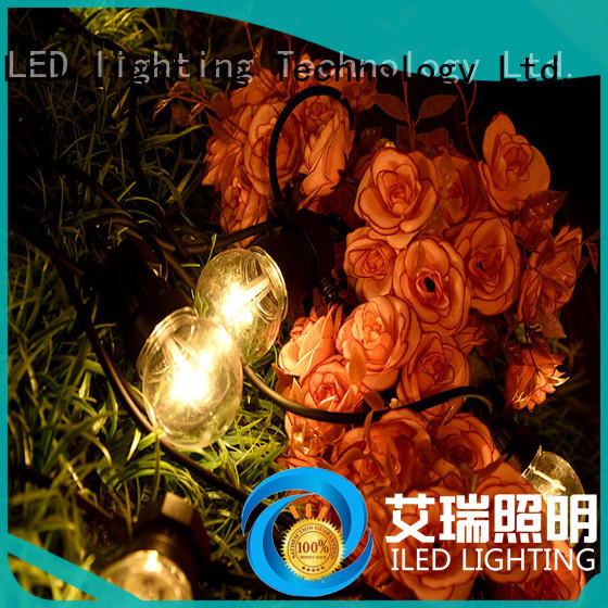 ILED festoon string lights lamp for wedding