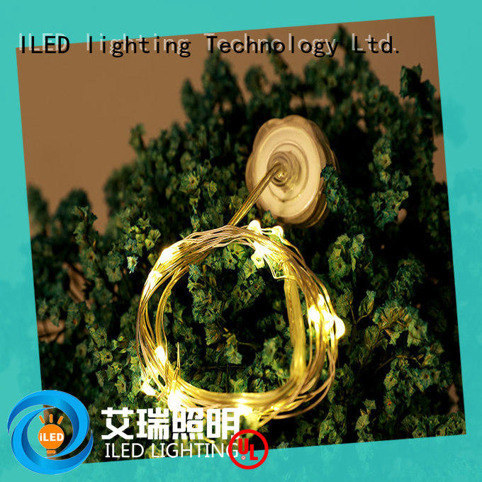operated battery operated outdoor christmas lights supplier for outdoor