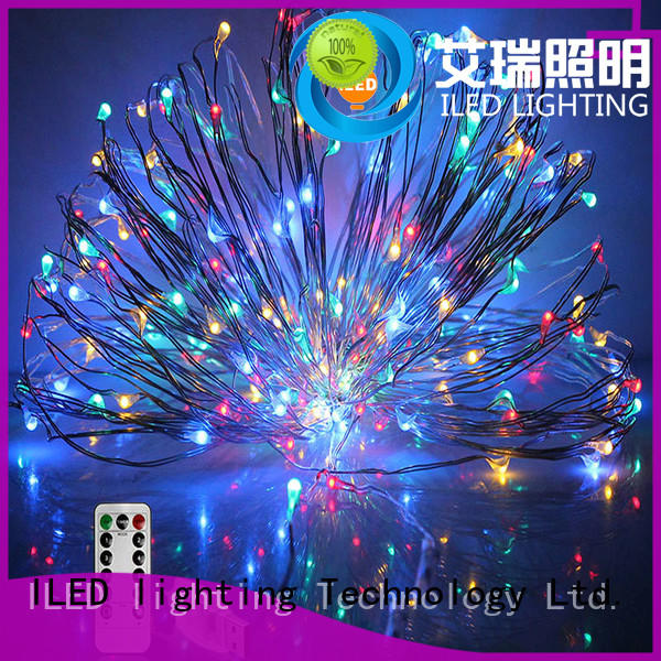 ILED copper christmas lights manufacturer for decoration