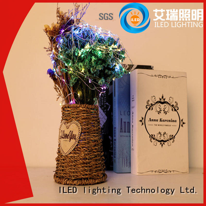 ILED copper wire lights battery operated supplier for bistro