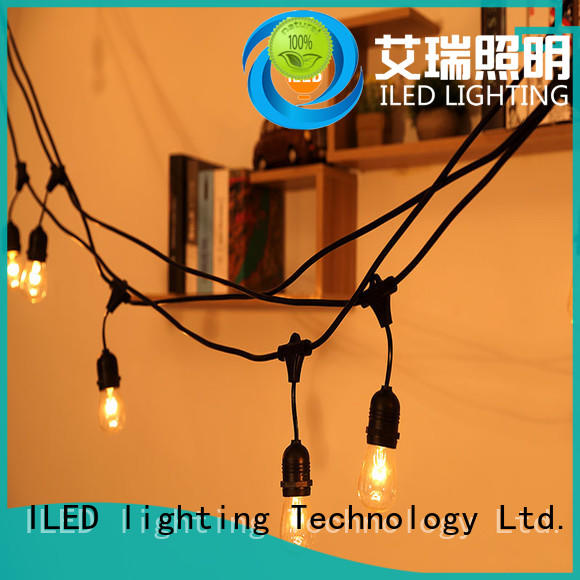 garden string lights lamp for party ILED