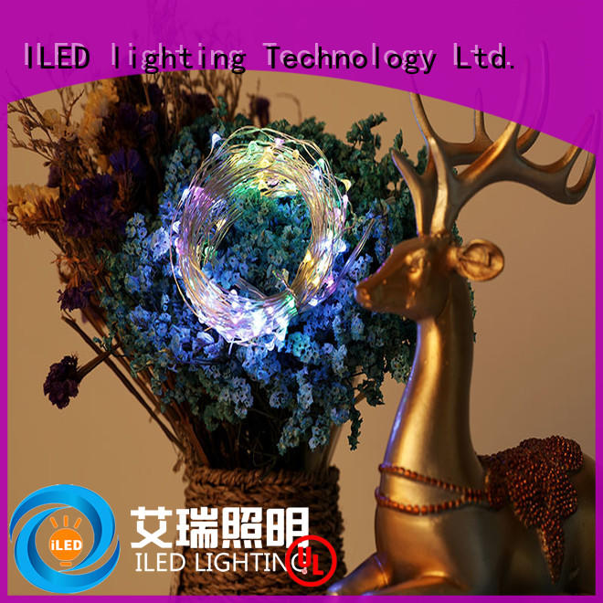ILED usb copper wire lights series for wedding