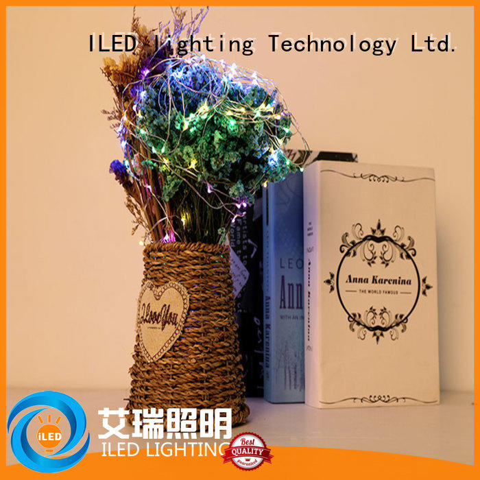powered battery christmas lights supplier for wedding
