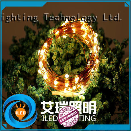 waterproof battery operated outdoor christmas lights lamp for outdoor