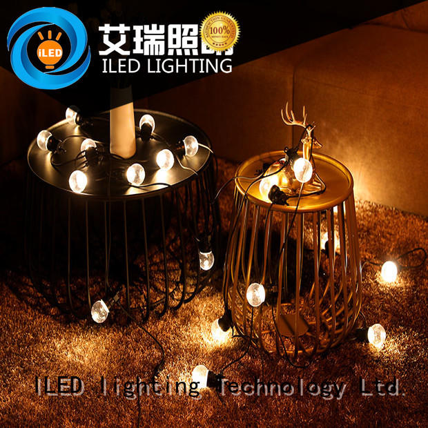 ILED novel festoon lights wedding supplier for indoor
