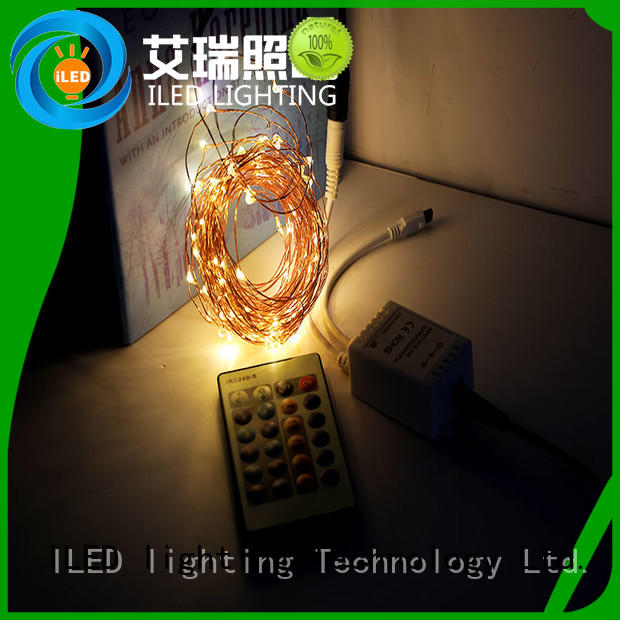 plug in copper wire lights supplier for christmas