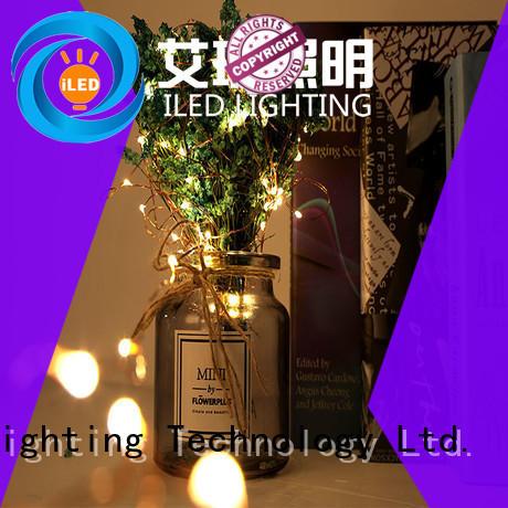ILED novel led christmas lights copper wire for christmas