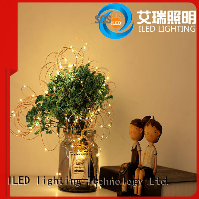 ILED powered battery operated wire lights lamp for wedding