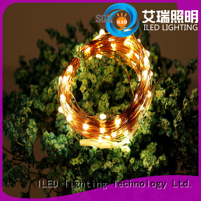 powered copper wire lights battery operated supplier for indoor
