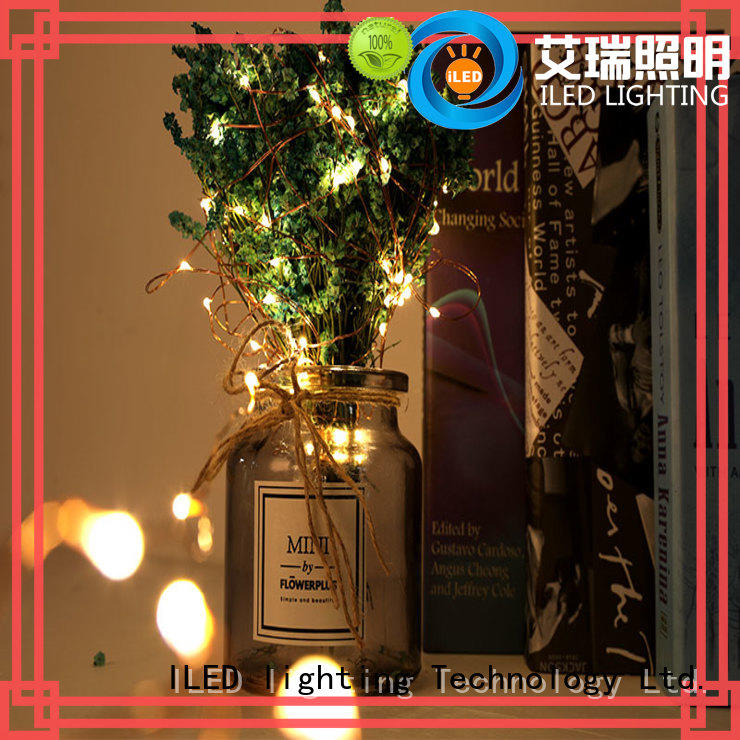 novel usb copper wire lights series for wedding