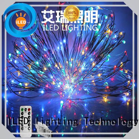 ILED environmental usb copper wire lights series for wedding
