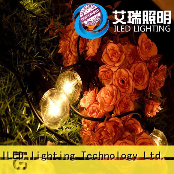 festoon string lights manufacturer for indoor ILED