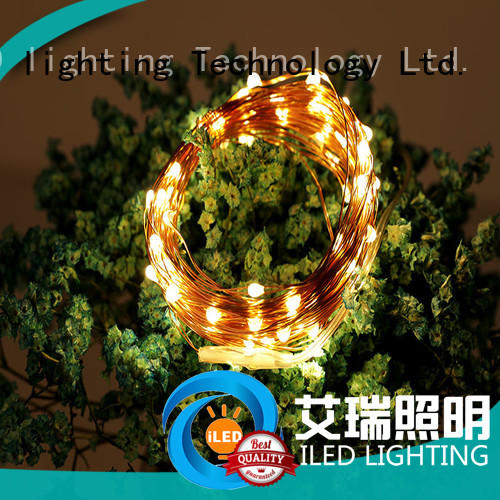 ILED remote battery operated wire lights personalized for party