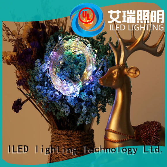 100leds copper xmas lights lamp for wedding ILED