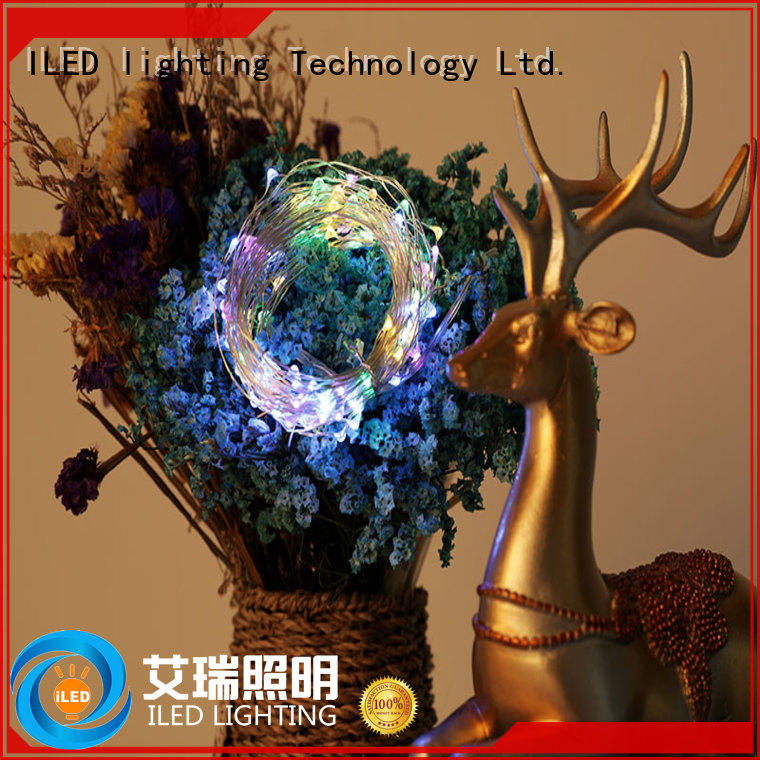 ILED usb copper wire lights supplier for party