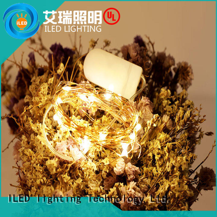 ILED waterproof battery operated led lights on copper wire lamp for decoration