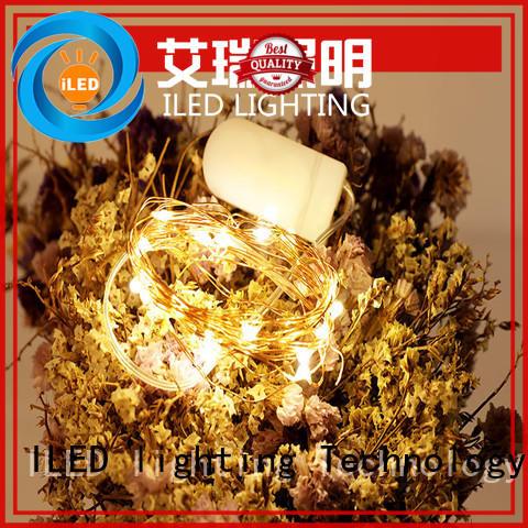 powered battery string light lamp for bistro