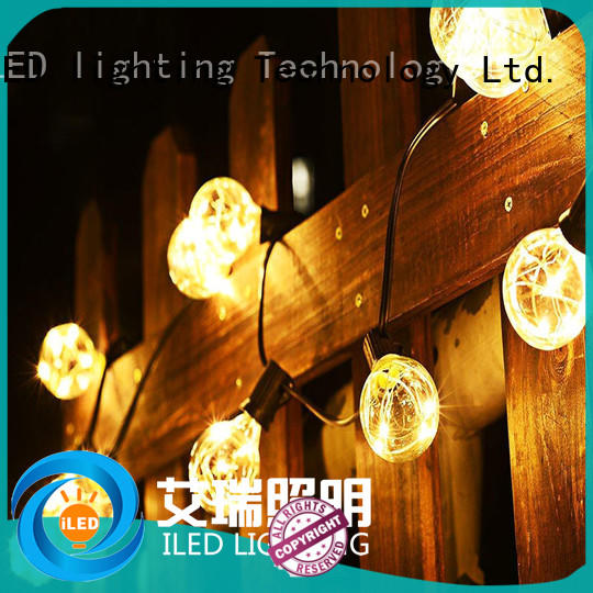G40 LED Copper Wire String Light with 25 Low Voltage Clear Globe Christmas Decoration