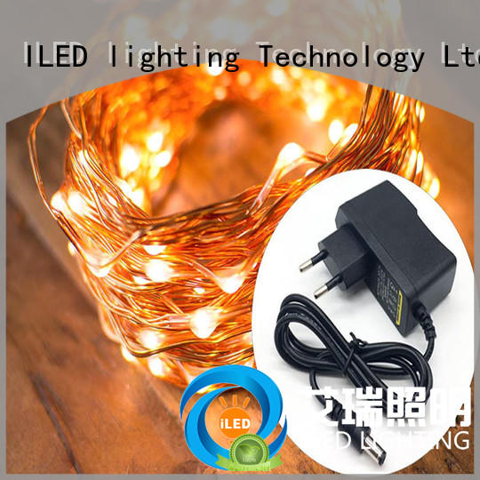 ILED plug in copper wire lights manufacturer