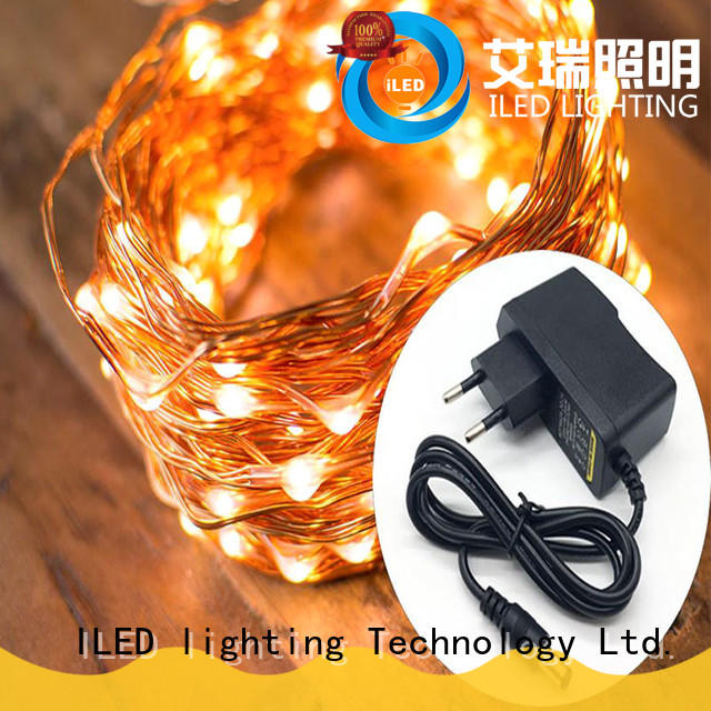ILED white fairy lights adaptor plug supplier for party