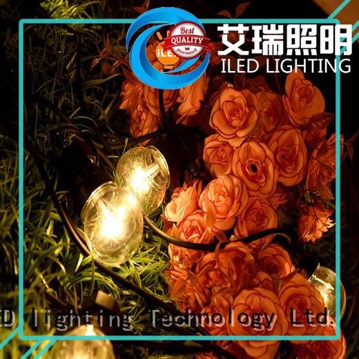 white festoon string lights supplier for christmas