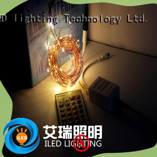 ILED fairy lights adaptor plug personalized for christmas