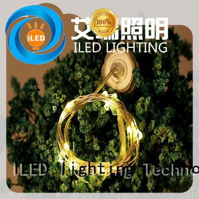 powered battery operated outdoor string lights manufacturer for Christmas