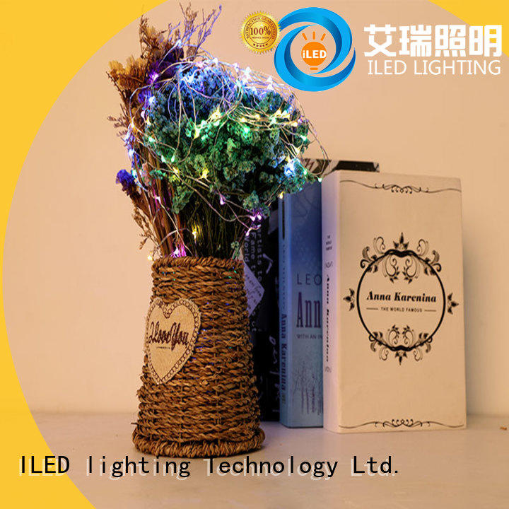 operated battery wire lights supplier for indoor