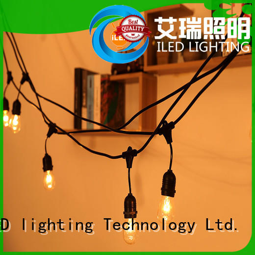 ILED hanging plug in festoon lights design for household