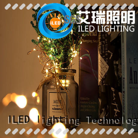 ILED usb copper wire lights series for party
