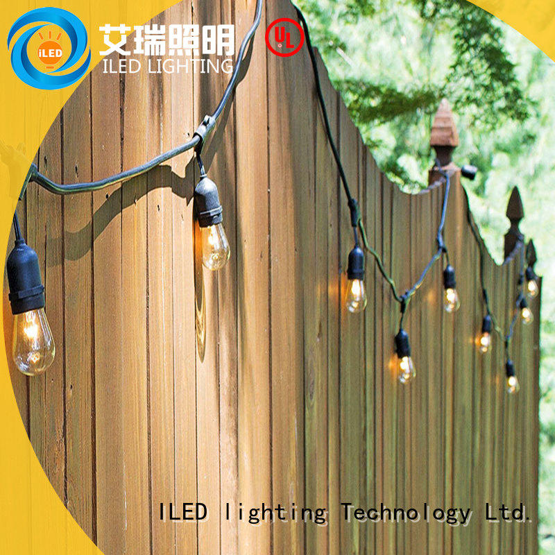 ILED plug in festoon lights supplier for wedding