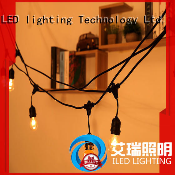 ILED decorative string lights supplier for party