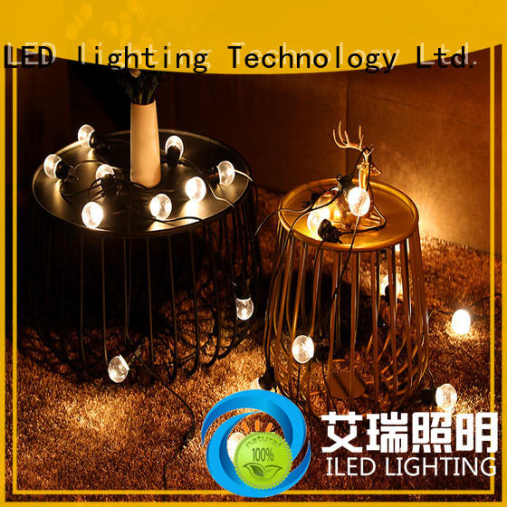 G50 Festoon String Lights Low Voltage Commercial Christmas Wedding Lighting