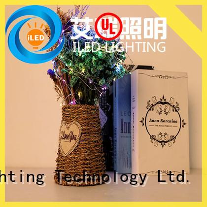 remote battery string light supplier for wedding