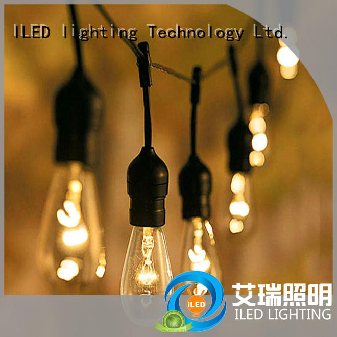 ILED plug in string light supplier for party