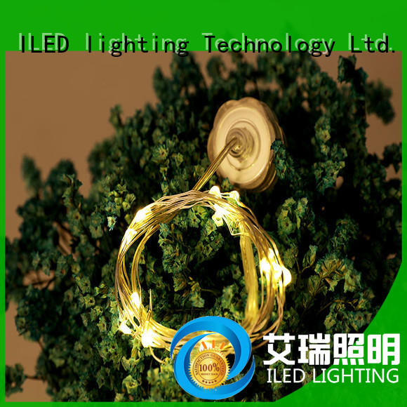 ILED powered battery wire lights manufacturer for indoor